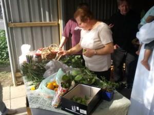 Inspecting the graden produce