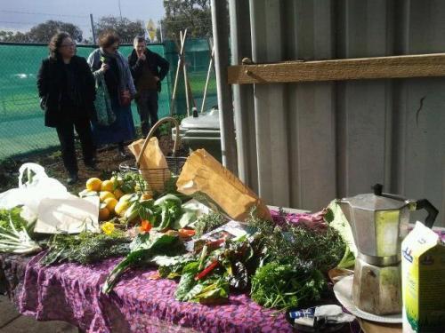 20140712-Sus-Fawkner-foodswap-community-gardening01