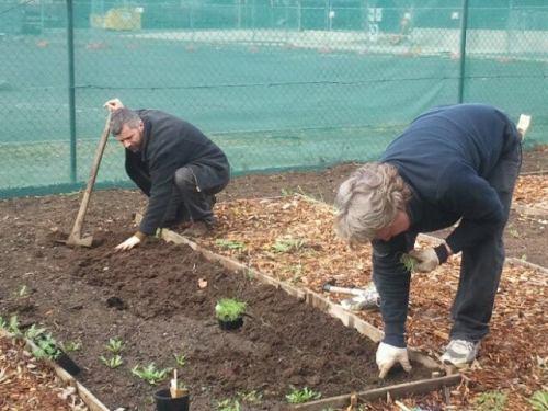 20140712-Sus-Fawkner-foodswap-community-gardening05