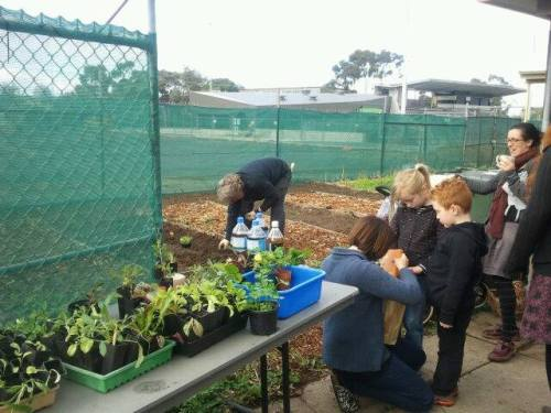 20140712-Sus-Fawkner-foodswap-community-gardening06
