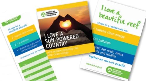 ACF-campaign-leaflets